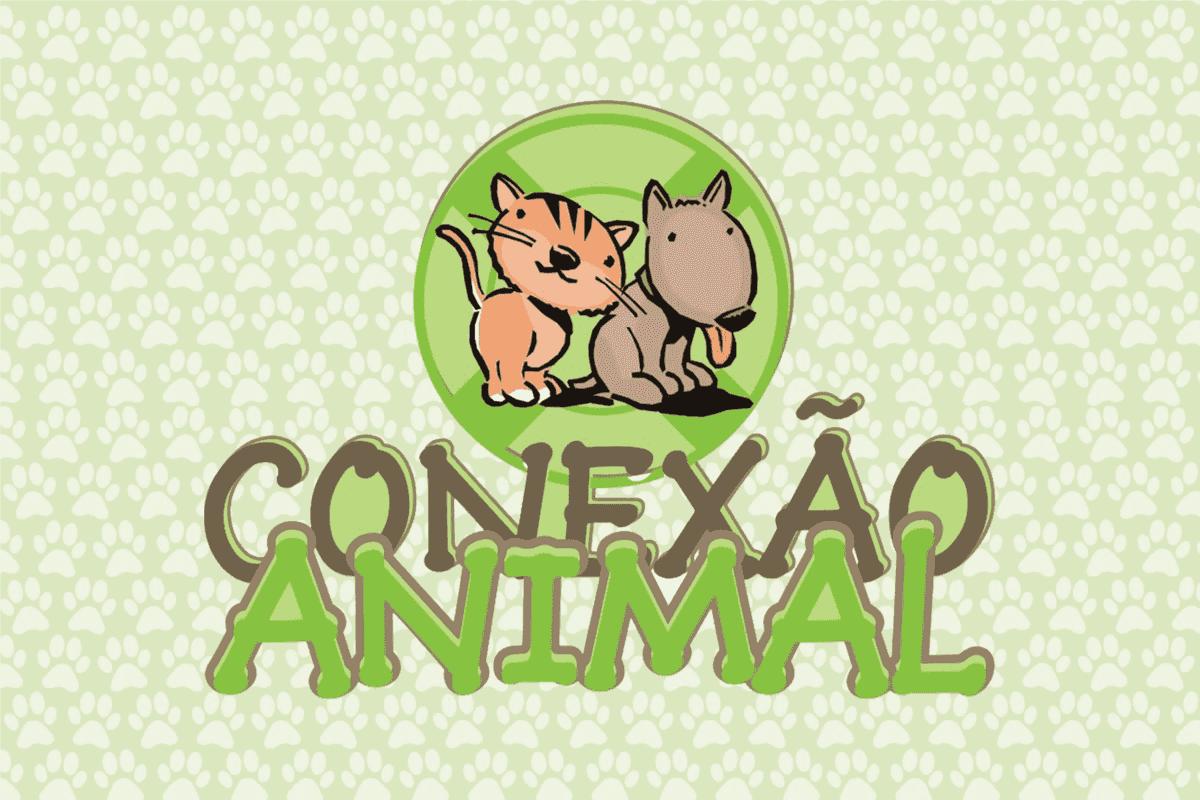 Pet Conexão Animal Criciúma - SC - gestão de redes sociais
